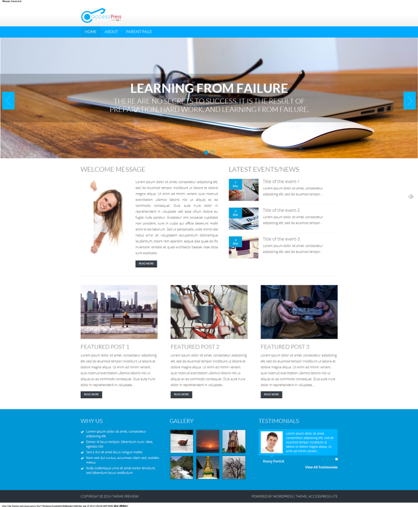 Theme Preview   Previewing Another WordPress Blog (15)